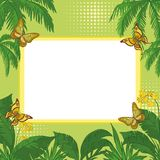 Tropical background Royalty Free Stock Images