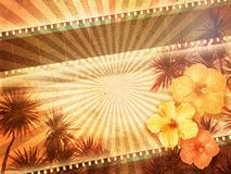Tropical Background. Tropical vintage background with film stripes, palm trees and hibiscus flowers Stock Image