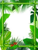 Tropical Background with Bamboo Frame Royalty Free Stock Image