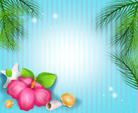 Tropical background with beach and tropical decoration Royalty Free Stock Images