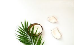 Tropical background with coconut halves. Palm leaves on white  background. stock photos