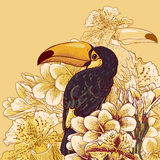 Tropical background with exotic flowers, Toucan Royalty Free Stock Photo