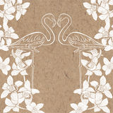Tropical background with flamingo and orchids on kraft paper. Ca Stock Images