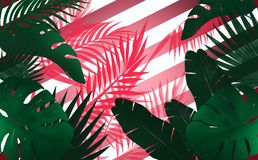 Tropical background, green leaves on a purple color, stripes. Tropical background, green leaves in purple, strips, tropical leaves, palms stock illustration