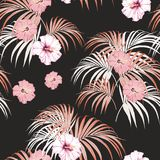 Seamless vector tropical pattern with light palm leaves and tropical pink hibiscus flowers on black background. Tropical background with jungle plants. Seamless Royalty Free Illustration