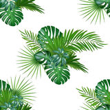 Tropical background with jungle plants. Seamless vector tropical pattern Stock Images