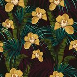 Tropical background with jungle plants. Seamless vector tropical pattern royalty free illustration