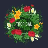 Tropical background with leaves and flowers of monstera and palm. Flowers and buds of hibiscus. Vector illustration on a black background Royalty Free Stock Photos