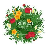 Tropical background with leaves and flowers of monstera and palm. Flowers and buds of hibiscus. Vector illustration on a white background Royalty Free Illustration