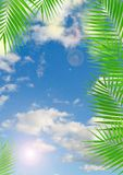 Tropical background with lens flare effect Royalty Free Stock Images