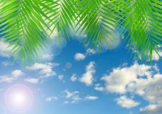 Tropical background with lens flare effect Royalty Free Stock Photo