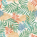 Tropical background with palm leaves. Stock Photo