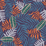 Tropical background with palm leaves. Royalty Free Stock Images