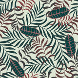 Tropical background with palm leaves. Royalty Free Stock Photography