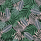Tropical background with palm leaves. Stock Photos