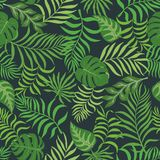 Tropical background with palm leaves. Seamless floral pattern. S Royalty Free Stock Image