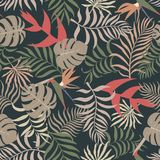 Tropical background with palm leaves. Seamless floral pattern. S Stock Photos