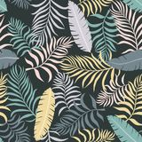 Tropical background with palm leaves. Seamless floral pattern. S Stock Photography