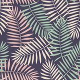 Tropical background with palm leaves. Seamless floral pattern. S Stock Image