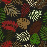 Tropical background with palm leaves. Seamless floral pattern. S Stock Photo