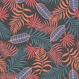 Tropical background with palm leaves. Seamless floral pattern. S Royalty Free Stock Photography