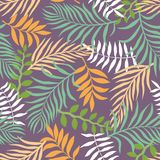 Tropical background with palm leaves. Seamless floral pattern. S. Ummer vector illustration Royalty Free Stock Image