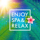 Tropical background with palm leaves. Spa concept Royalty Free Stock Photography
