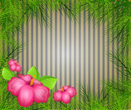 Tropical background with palm tree leaves Stock Photo