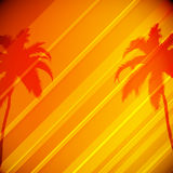 Tropical Background with Palm Trees Royalty Free Stock Photos