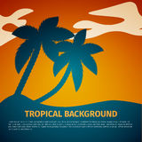 Tropical background Royalty Free Stock Image