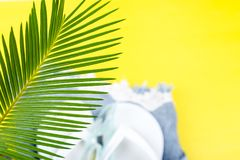 Tropical Background Palm Trees Branches with blurred Set of Woman's Things Accessories to Beach Season. stock photo