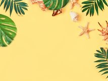 Tropical Background. Palm Trees Branches with starfish and seashell on yellow background. Travel. Copy space. Tropical Background. Palm Trees Branches with vector illustration