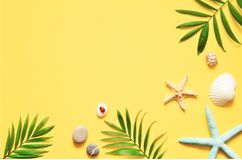 Tropical Background. Palm Trees Branches with starfish and seashell on yellow background. Travel. Copy space. Royalty Free Stock Images