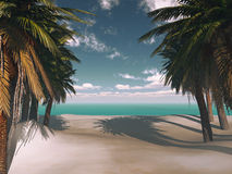 Tropical background with palm trees Stock Images