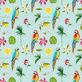 Tropical Background with Parrot Bird and Tropical Flowers. Seamless Pattern. Vector Stock Image