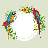 Tropical background with parrots. Royalty Free Illustration