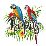 Tropical background with parrots. Palm leaves, hibiscus flowers and exotic birds royalty free illustration
