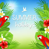 Tropical background with parrots Royalty Free Stock Image