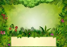 Tropical background with rectangle floral frame in concept bamboo Stock Photography