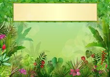 Tropical background with rectangle floral frame in concept bamboo Stock Images