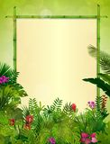 Tropical background with rectangle floral frame in concept bamboo Royalty Free Stock Photography