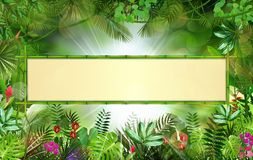 Tropical background with rectangle floral frame in concept bamboo Royalty Free Stock Images