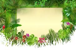Tropical background with rectangle floral frame in concept bamboo Royalty Free Stock Photo