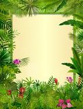 Tropical background with rectangle floral frame in concept bamboo Stock Photos