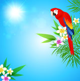 Tropical background with red parrot Stock Photography