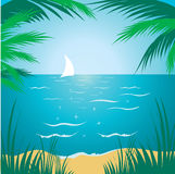 Tropical background tropical background Royalty Free Stock Photos