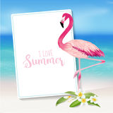 Tropical Background. Tropical Flower and Flamingo Bird Royalty Free Stock Photos