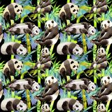 Tropical  bamboo tree and panda pattern in a watercolor style. Aquarelle wild bamboo tree and panda for background, texture, wrapper pattern, frame or border Royalty Free Stock Photo
