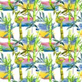 Tropical  bamboo tree pattern in a watercolor style. Aquarelle wild bamboo tree for background, texture, wrapper pattern, frame or border Royalty Free Stock Images