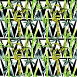 Tropical  bamboo tree pattern in a watercolor style. Aquarelle wild bamboo tree for background, texture, wrapper pattern, frame or border Stock Photos